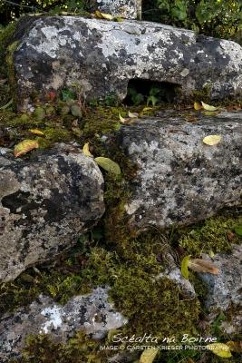Glencollmcille Cross Shaft
