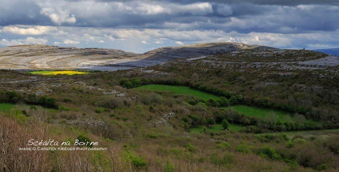 Lough Avolla Valley, Spring