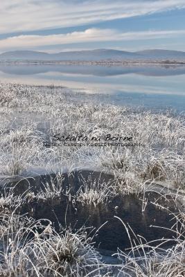Lough Bunny, Hoar Frost