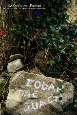 Mac Duagh's Well, Kinvara