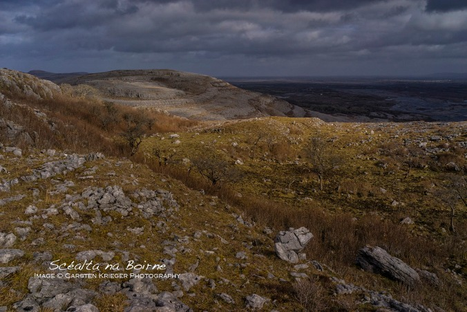 Slieve Roe and Eastern Burren Wetlands