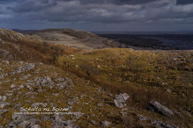 Slieve Roe and Eastern Burren Wetlands