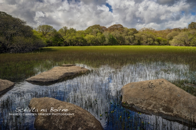 Lough Gealain