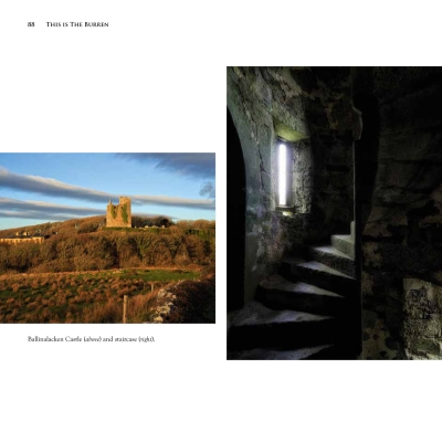 This-is-the-Burren-final-proofs(1)-88