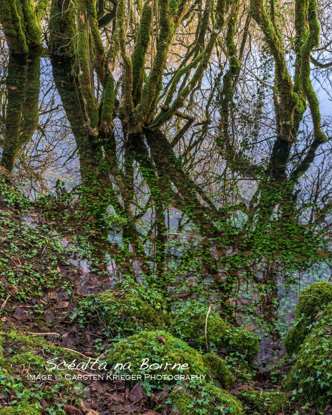 Burren National Park, Winter Floods